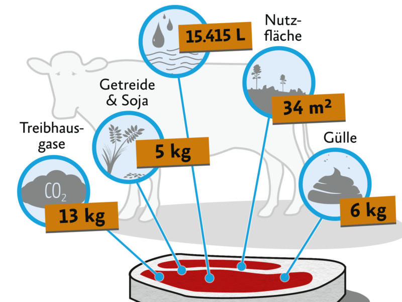 "Infographic for ""What's inside of 1kg meat"""